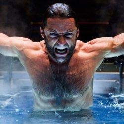 X-Men Origins Wolverine Reader Poll Featured Image