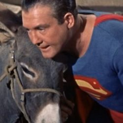 Adventures of Superman Brainy Burro